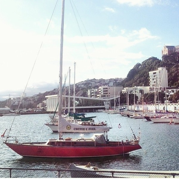 COFFEEUFEEL - This beauty spotted by our friends optimal_workshop #COFFEEUFEEL away sailin ... Well almost! Happy Sunday!